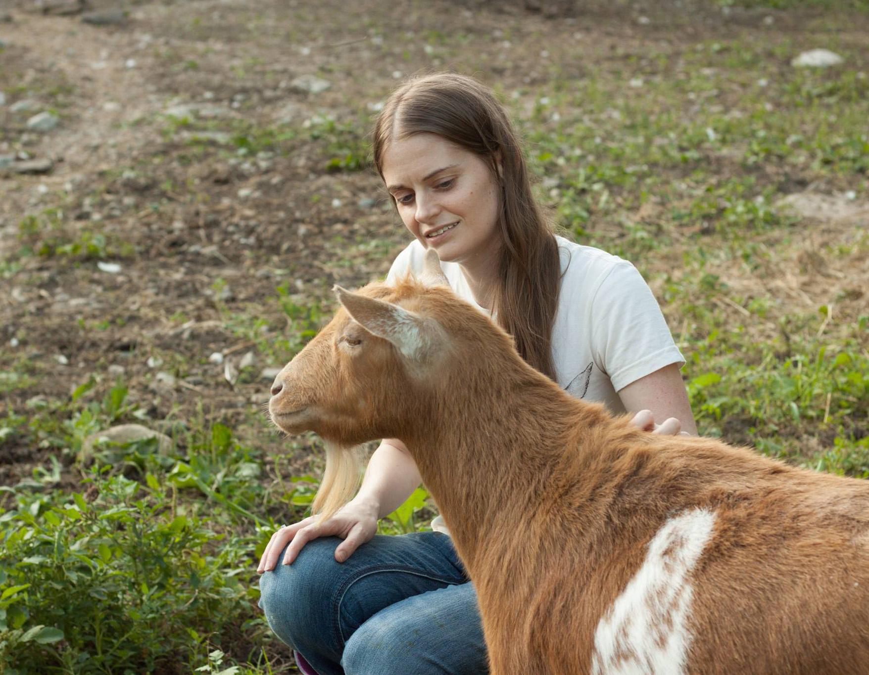 Nonprofit Customer Profile Maple Farm Sanctuary Network For Good