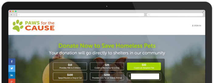 Online Fundraising Page