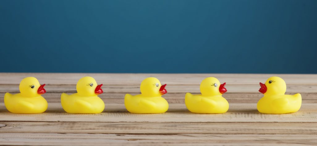 year end nonprofit fundraising get your ducks in a row network