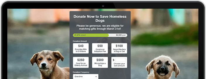 Donate Now Fundraising Pages
