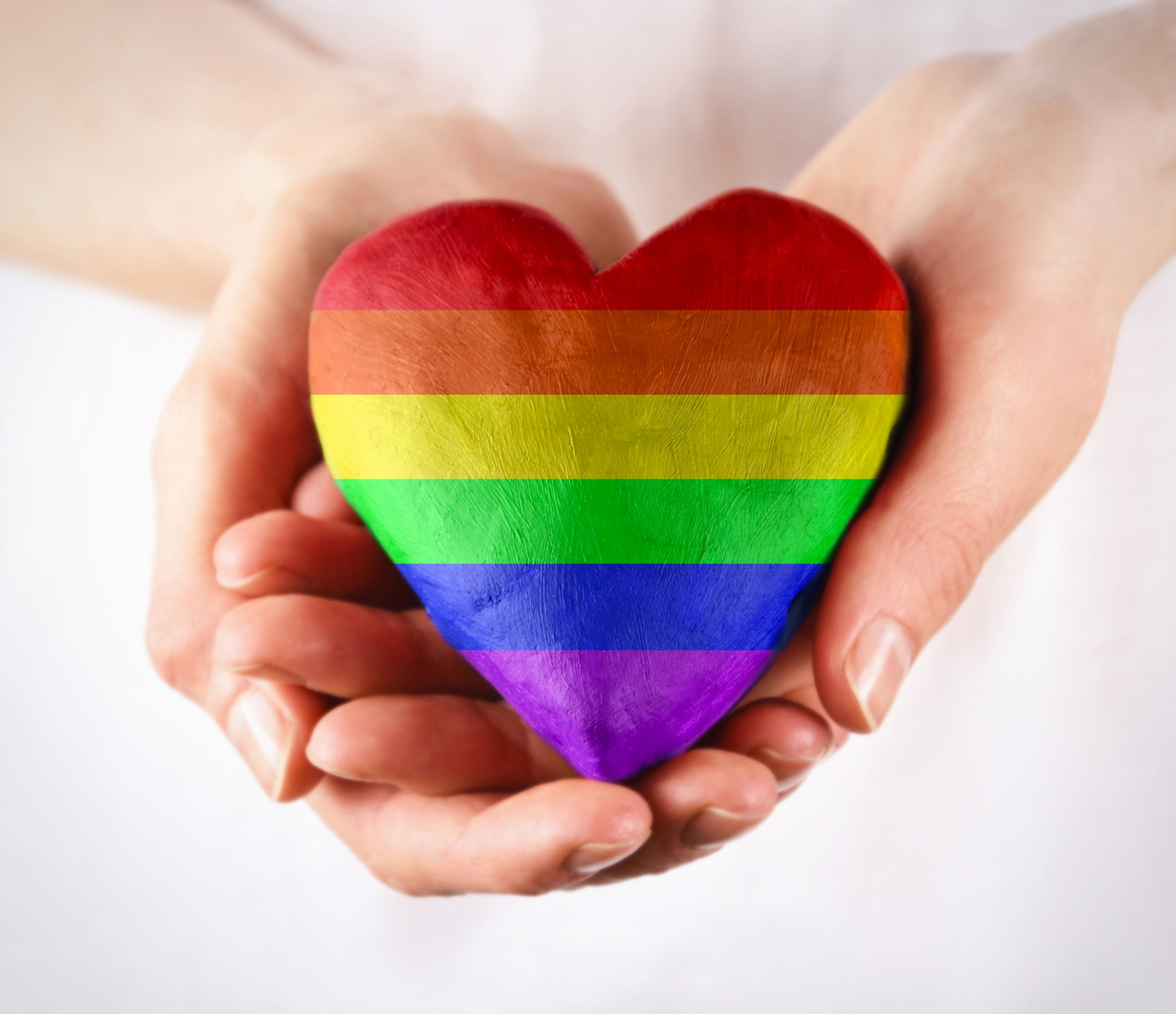 """the identity of """"donor"""" takes precedence over the identity as LGBTQIA+"""