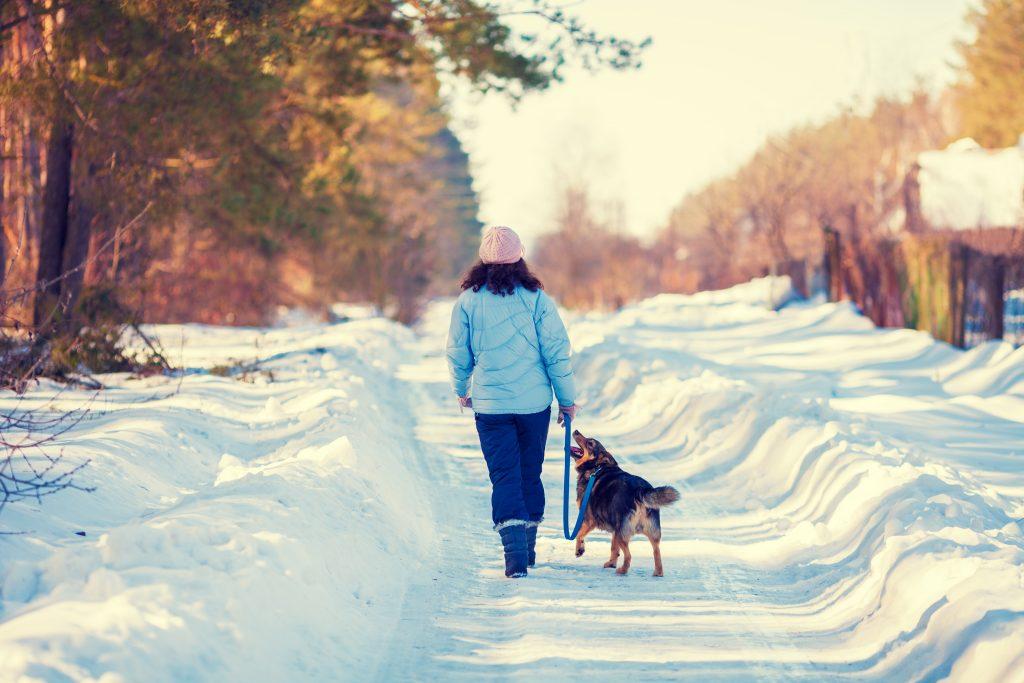 woman walking dog in snow