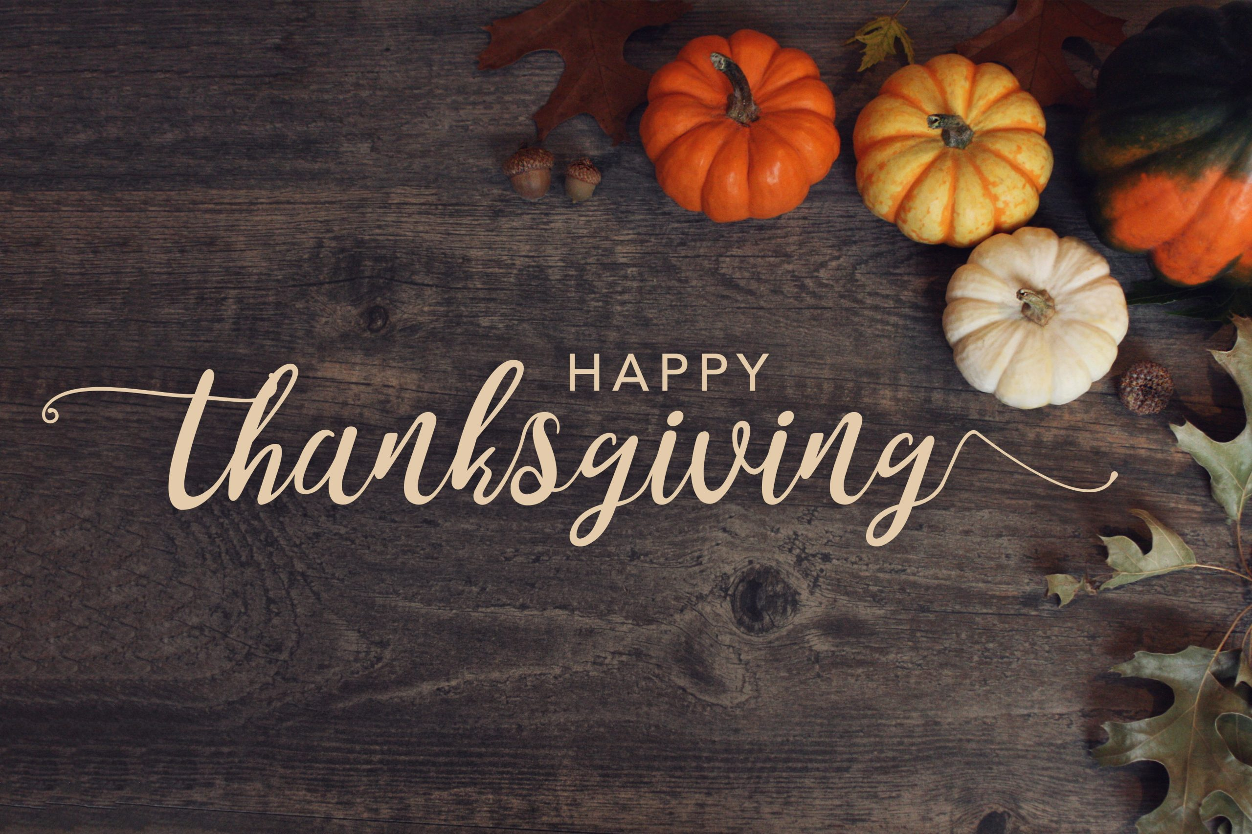 This Thanksgiving, We Are Thankful for You